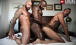 Interracial Bareback Threesome – Rod Beckmann, Drew Sebastian, And Dolf Dietrich