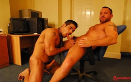 Gay Executivo - Matthew Ford & Daniel Marvin