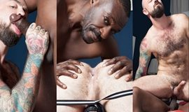 Titan and Rogue Status – Black hot welcum