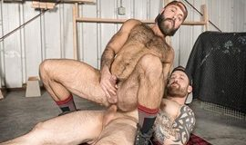 Bromo – The Lumber Yard - Jordan Levine & Teddy Bear