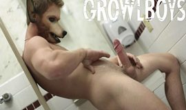 GrowlBoys – Lost Boys – H.A.R.P.E.