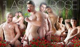 The Last Rose - Filme Gay Completo